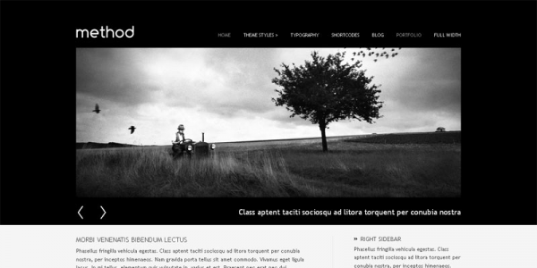 Премиум тема WordPress от VivaThemes: Method