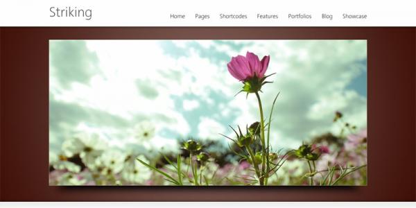 Премиум портфолио шаблон WordPress от ThemeForest: Striking