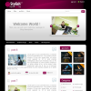 Тема WordPress от ThemeForest: Stylish
