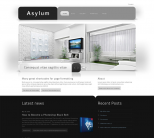 WordPress тема от ThemeForest: Asylum