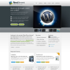 Тема WordPress от ThemeForest: NextElement
