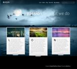 Русский шаблон WordPress от ElegantThemes: InStyle