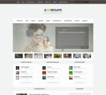 Универсальная тема WordPress от ElegantThemes: Aggregate