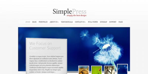 Премиум WordPress тема от ElegantThemes: SimplePress