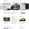 Premium WordPress тема от ThemeForest: Hyperion