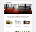 Премиум тема WordPress от ElegantThemes: Chameleon