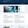 Премиум бизнес тема WordPress от ThemeForest: BRANDnew