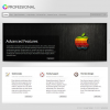 ElegantThemes бизнес тема WordPress: TheProfessional