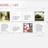 Премиум тема WordPress от ElegantThemes: DailyNotes