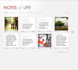 Премиум тема WordPress от ElegantThemes: DailyNotes