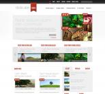 WordPress тема от ElegantThemes: DelicateNews
