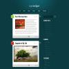 Премиум тема WordPress от ElegantThemes: LightBright