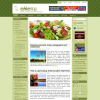 Кулинарная тема WordPress от NewWpThemes: MyMenu