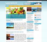 Голубой новостной шаблон WordPress от NewWpThemes: Slightly