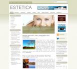 Легкий дизайн для WordPress от NewWpThemes: Estetica