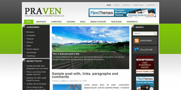 Шаблон для WordPress от NewWpThemes: Praven