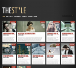 Премиум тема WordPress от ElegantThemes: TheStyle