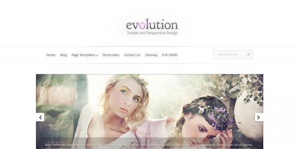 Универсальная тема для WordPress от ElegantThemes: Evolution