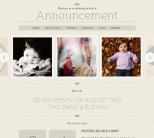 Премиум тема для WordPress от WooThemes: Announcement