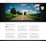 Бизнес шаблон WordPress от ThemeForest: Striking