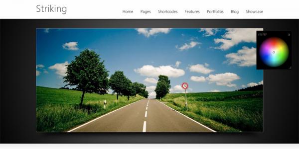 Бизнес шаблон WordPress от ThemeForest: Striking