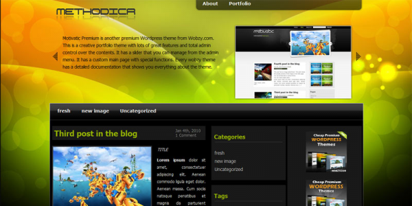 Премиум шаблон WordPress от Wobzy: Methodica