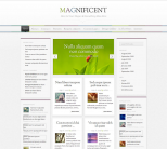 Премиум тема WordPress от ElegantThemes: Magnificent 1.3