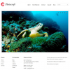 Премиум тема WordPress от Templatic: Photocraft