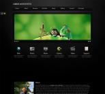 Шаблон визитка для wordpress от Themeforest: Locus One Page
