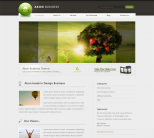 WordPress тема от ThemeForest: Akon Business