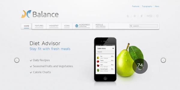 Универсальная тема для WordPress от YOOtheme: Balance