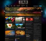 Темная тема для WordPress от ThemeForest: Noctis