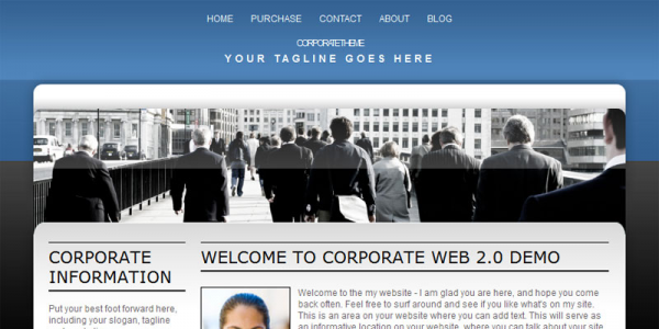 Премиум тема для WoprdPress от iThemes: Corporate