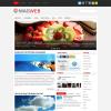 Стильный новостной шаблон вордпресс: MagWeb