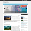 Медицинская тема для wordpress: Molecula