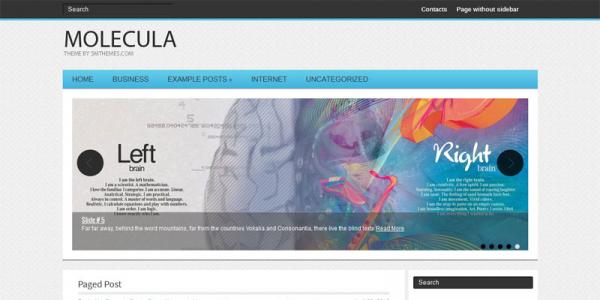 Медицинская тема для wordpress: Molecula
