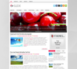 Серая новостная тема для wordpress: Slide