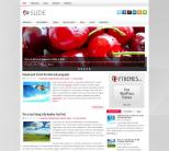 Серая новостная тема для wordpress: Slide