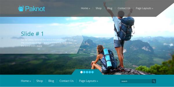 Туристическая тема wordpress: Paknot
